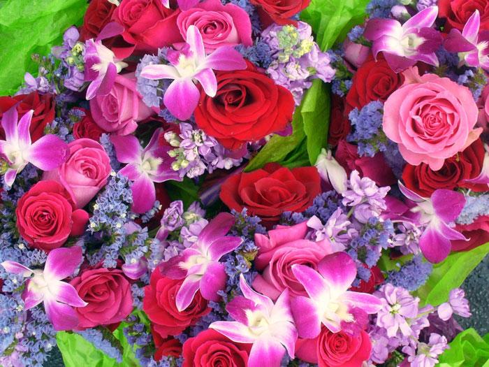Найти красивые открытки цветы