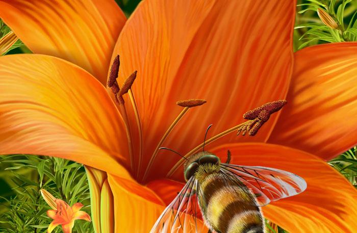 Заставки Пчёлка на цветочке на рабочий стол.