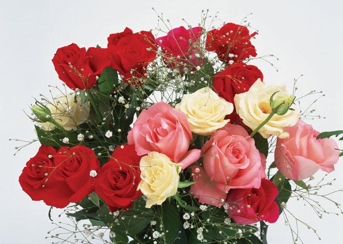 Цветы - Анна Антоновна Богдан.