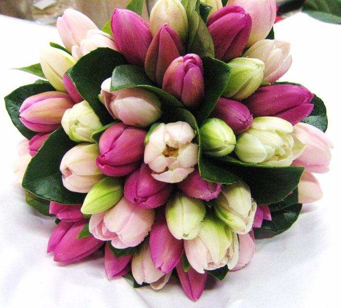 http://foto-cvety.narod.ru/images/flowers167.jpg