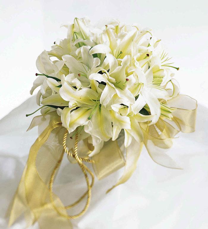 http://foto-cvety.narod.ru/images/flowers173.jpg